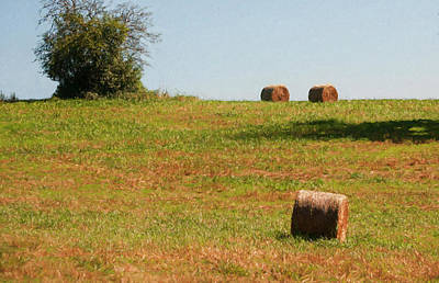 Photograph - Hay Bales by Mick Burkey