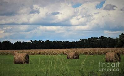 Photograph - Hay Bales by Paulette Thomas