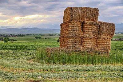 Photograph - Hay Colorado by James BO Insogna
