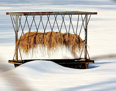 Photograph - Hay Feeder In Winter by Tana Reiff