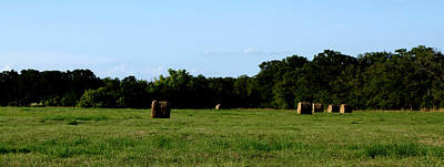 Photograph - Hay Field And Grass by James Granberry