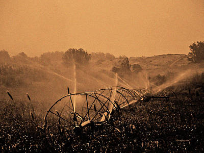 Photograph - Hay Field Irrigation by Harold Zimmer