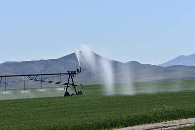 Photograph - Hay Field Irrigation by Kae Cheatham
