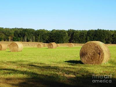 Photograph - Hay Field by Tim Townsend