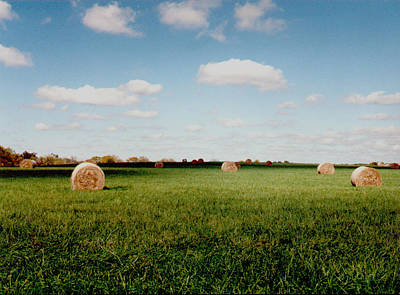 Hay Fields Art Print