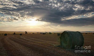 Photograph - Hay Harvest by Idaho Scenic Images Linda Lantzy