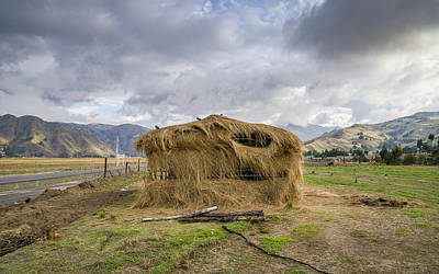 Hay Hut In Andes Art Print