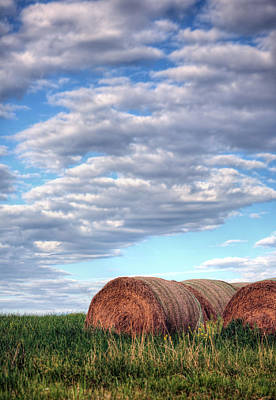 Fauquier County Virginia Photograph - Hay It's Art by JC Findley