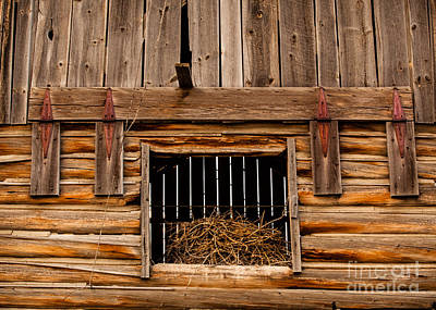 Photograph - Hay Loft Door by DS Dodd