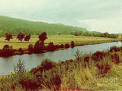 Photograph - Hay-making Field Alongside A Stream - Scotland by Merton Allen