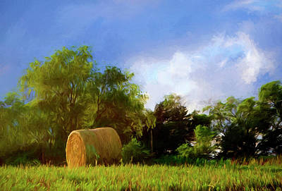 Photograph - Hay Roll - Nebraska Field by Nikolyn McDonald