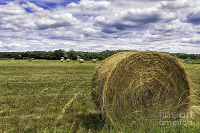 Manitoulin Photograph - Hay Roll by Timothy Hacker