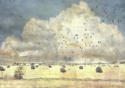 Photograph - Hay Rolls Near Broken Arrow Oklahoma by Janette Boyd