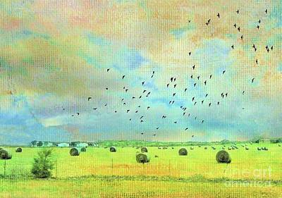 Photograph - Hay Rolls Near Broken Arrow Oklahoma Two by Janette Boyd