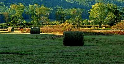 Photograph - Hay Season by Rodney Lee Williams
