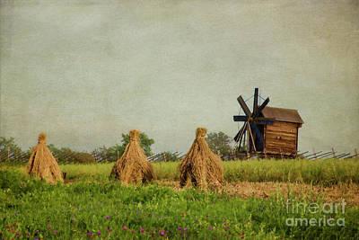 Photograph - Hay Stacks by Elena Nosyreva