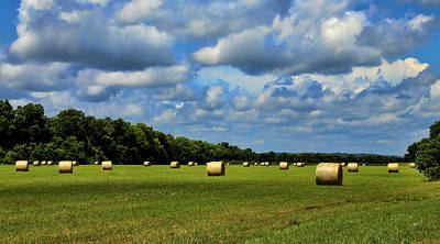 Natchitoches Photograph - Haybales by Judy Vincent