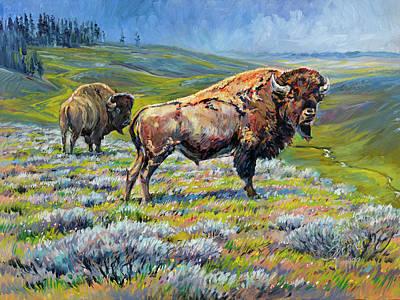 Hayden Valley Bulls Original