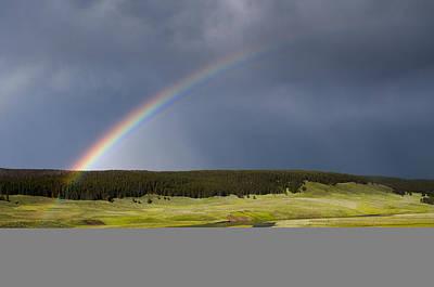 Hayden Valley Rainbow Original