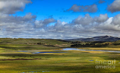 Photograph - Hayden Valley by Robert Bales