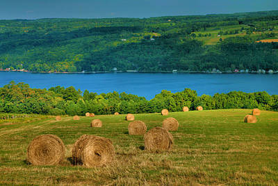 Hayfield And Lake Iv Print by Steven Ainsworth