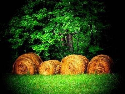 Hayroll Four Art Print by Michael L Kimble