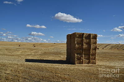 Photograph - Haystack Off Hwy 2 by Larry Johnston