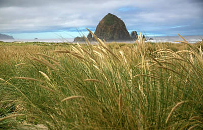 Photograph - Haystack Rock And Beach Grass by Elvira Butler