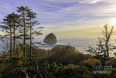 Photograph - Haystack Rock At Evening's Calm by Moore Northwest Images