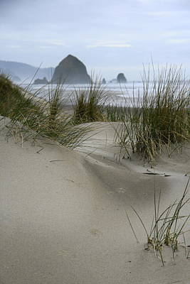 Haystack Rock From Chapman Point Art Print by Steven A Bash