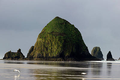 Photograph - Haystack Rock by Jason Clarke
