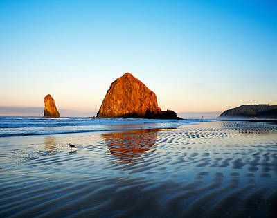 Reflections In Water Photograph - Haystack Rock by Panoramic Images