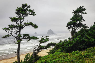 Photograph - Haystack Rock by Rick Furmanek