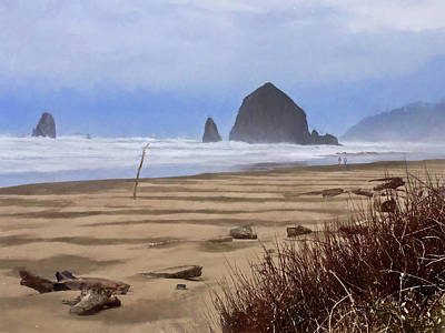 Photograph - Haystack Rock by Thom Zehrfeld