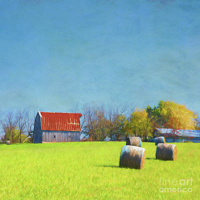 Eureka Springs Photograph - Haystacks by Elena Nosyreva