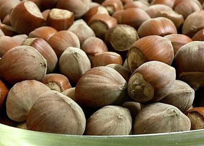 Photograph - Hazelnuts by Contemporary Art