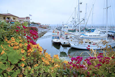 Photograph - Hazy Days At The Harbor by Lynn Bauer
