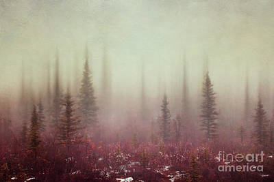 Hazy Days Art Print by Priska Wettstein