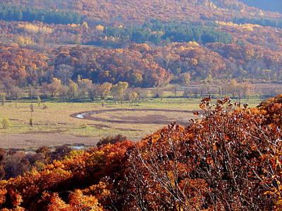 Photograph - Hazy Hillside Autumn by Wild Thing