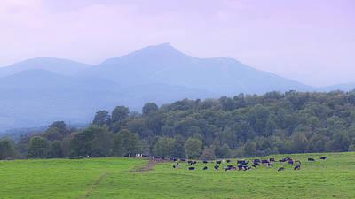 Photograph - Hazy Jay Peak Pastures by Alan L Graham