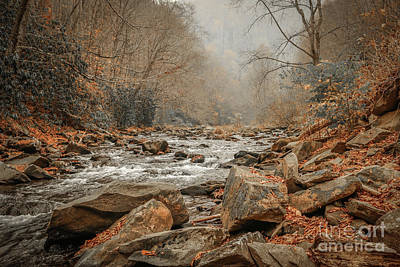 Hazy Mountain Stream #2 Art Print