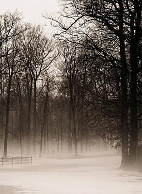 Photograph - Hazy Shade Of Winter by Brenda Conrad