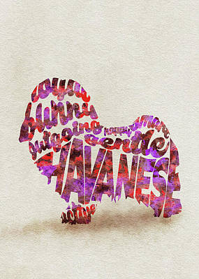 Havanese Dog Watercolor Painting / Typographic Art Art Print