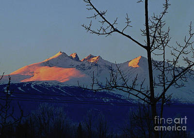 Photograph - Hbm Winter Sunset by Anne Havard