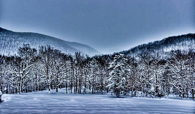 Photograph - Hdr Snow Trees by Jonny D