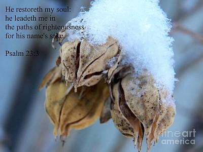 Photograph - He Restoreth My Soul by Corinne Elizabeth Cowherd