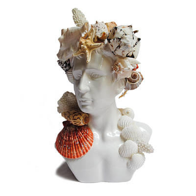 Mixed Media - He Shell Bust by Denise H Cooperman