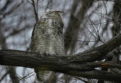 Photograph - He Spoke In Spirit by Rae Ann  M Garrett