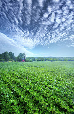 Photograph - He Who Sows Bountifully Will Also Reap Bountifully by Phil Koch