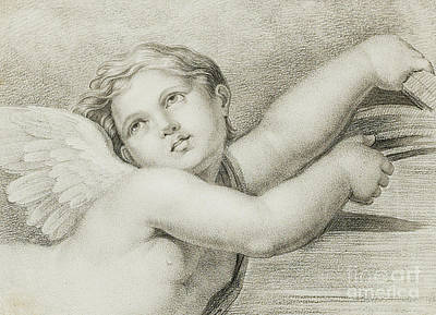 Head Of A Putto  Art Print by Raphael